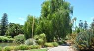Limpieza de jardines y zonas verdes